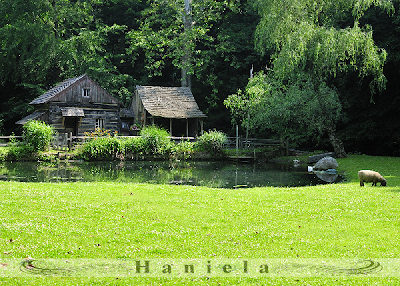Cutalossa  farm