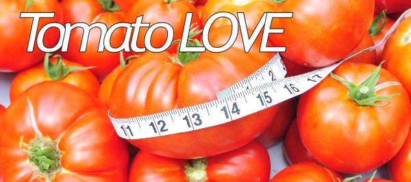Amazing Garden Tomatoes