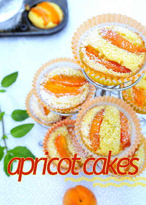 Apricot  Corn Meal Cakes