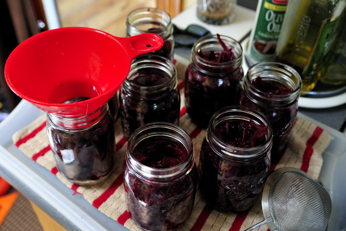Pickled Red Beets With Horseradish Haniela S Recipes