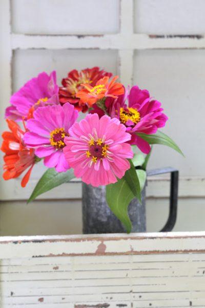 Flowers in the vase