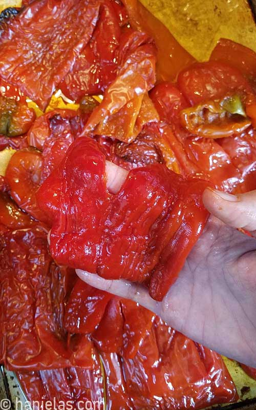 A hand holding a skinned pepper.