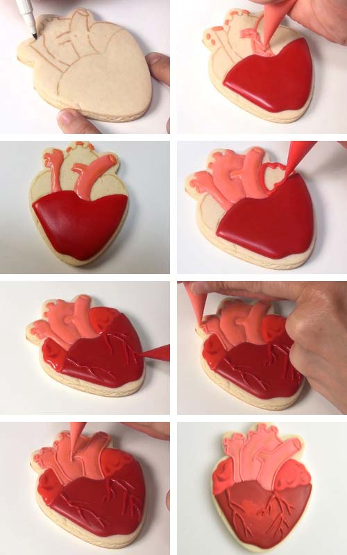 Piping sections of human heart cookie with different shades of red royal icing.