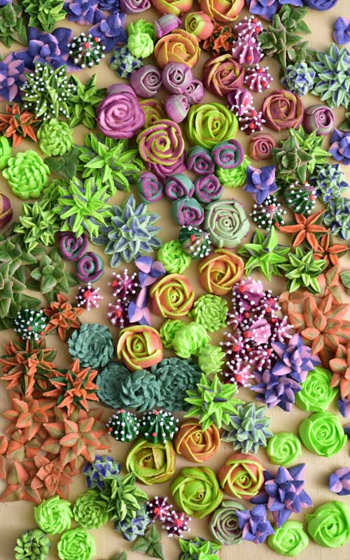 Royal Icing Succulents