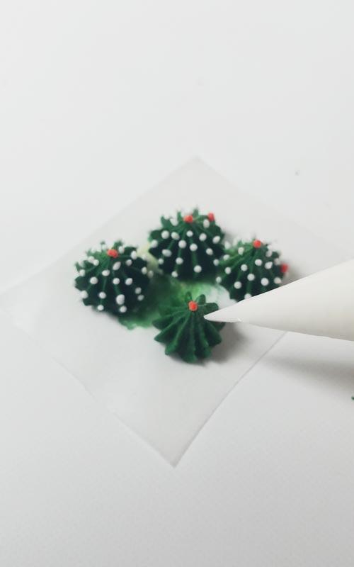 make stunning royal icing succulents