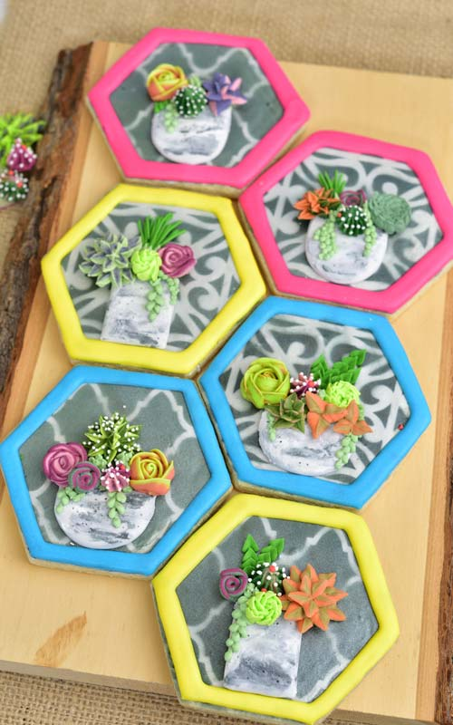 Decorate Beautiful Succulent Cookies