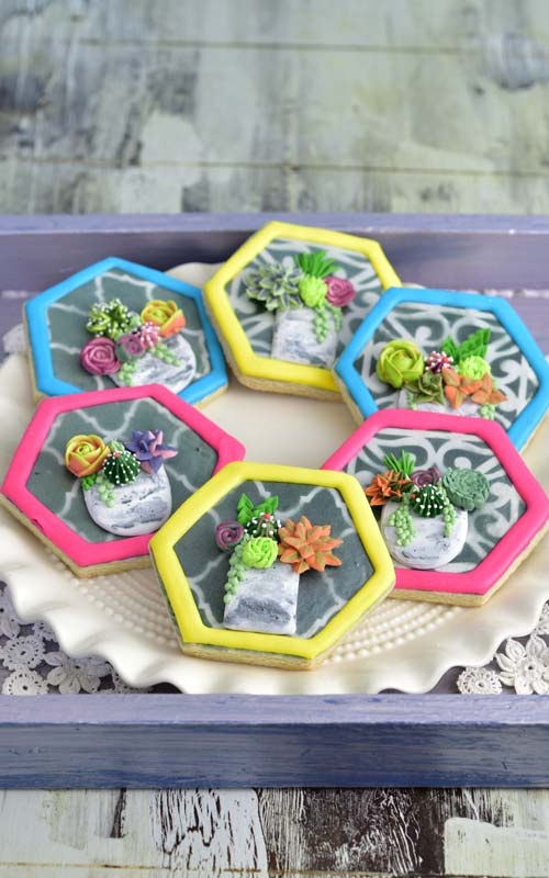 Decorate Beautiful Succulent Cookies