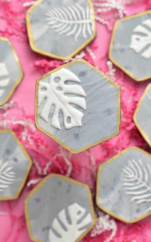 cookie with concrete royal icing texture and monstera leaf plant designs