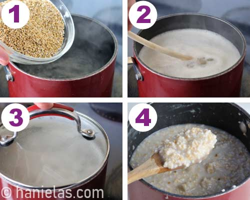 Pouring uncooked oats into boiling water.