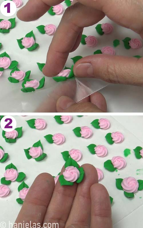Removing swirl roses with 3 leaves from a parchment.